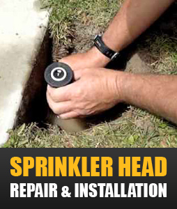 sprinkler head repair and installation in Wylie Texas